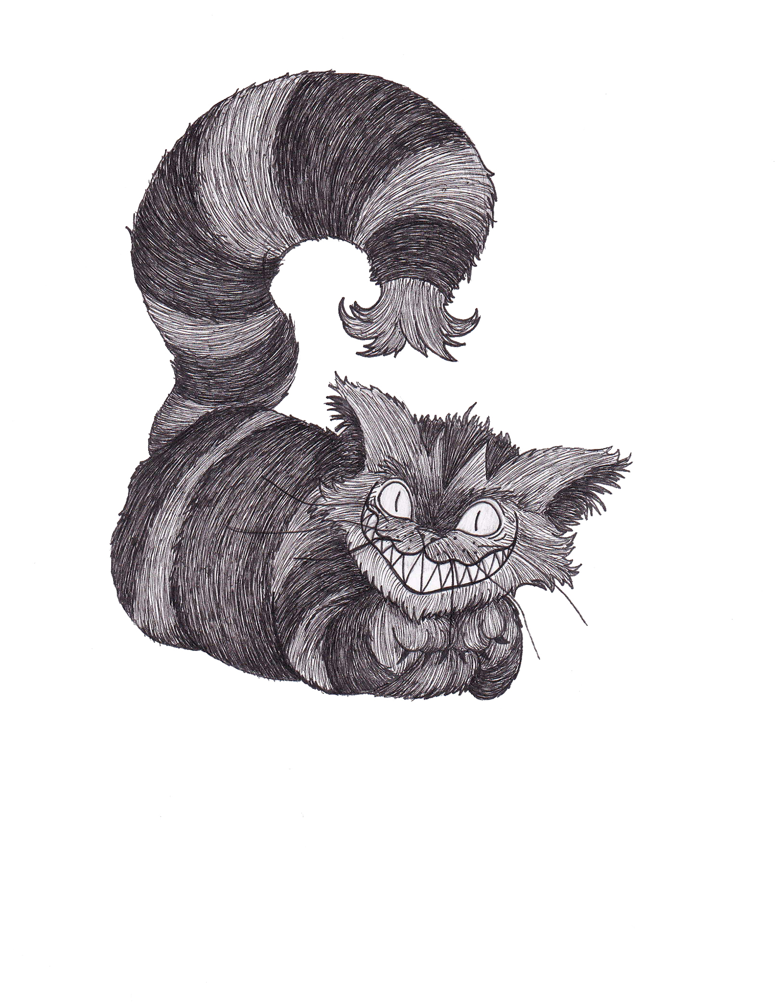 Lauren Elizabeth Osborne Illustration and Design