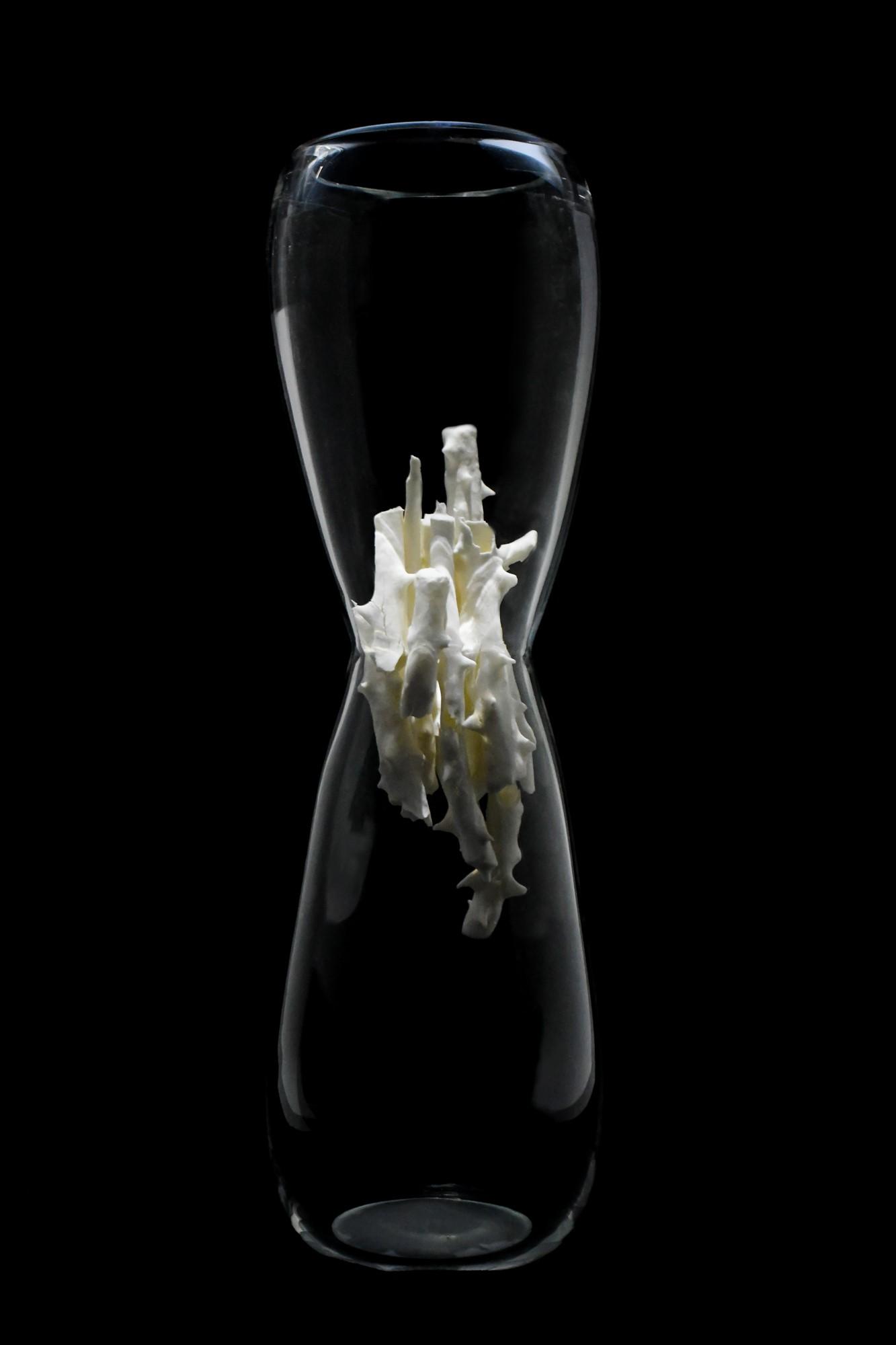 Glass and Ceramic Sculpture