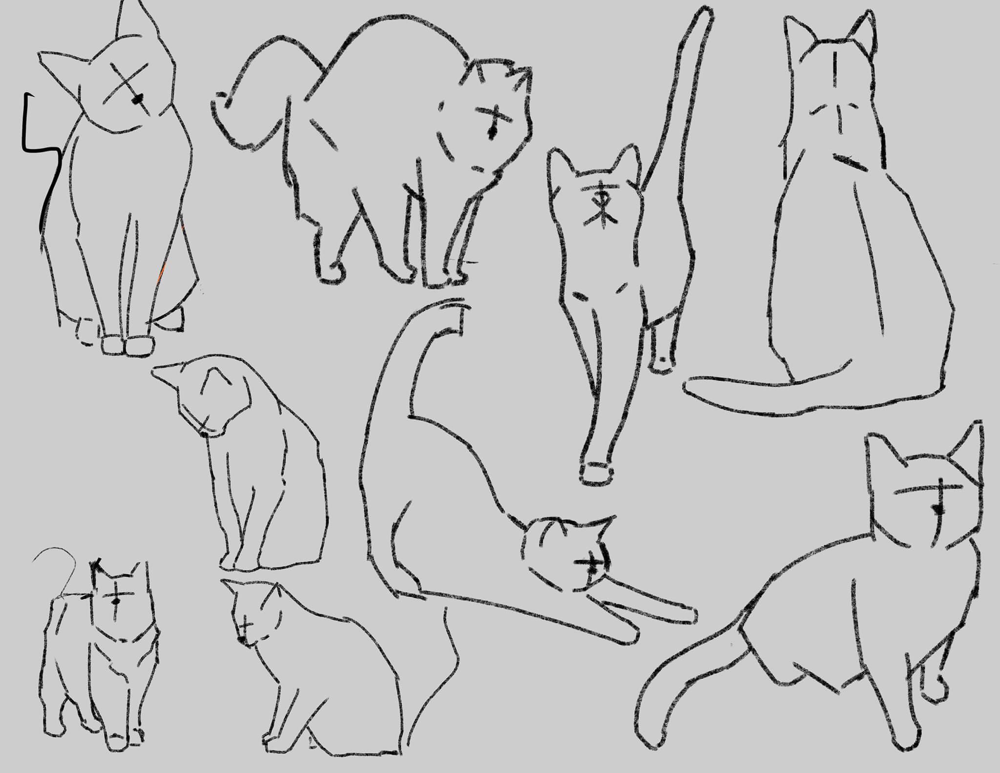 Caitlin_McCann-Cat_Sketches